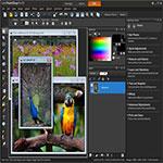 Corel PaintShop s1 ویرایش بی نظیر عکس های خود با Corel PaintShop Pro X9 v19.0.0.96