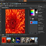 Corel PaintShop s2 ویرایش بی نظیر عکس های خود با Corel PaintShop Pro X9 v19.0.0.96