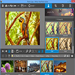 InPixio-Photo-Editor-اسکرین-شات