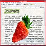 SoftMaker-Office-اسکرین-شات